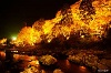 紅葉の香嵐渓!ライトアップされるのは何時から?