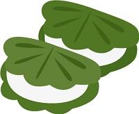 柏餅の葉っぱ