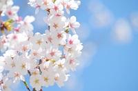 エアコンの掃除は春か秋