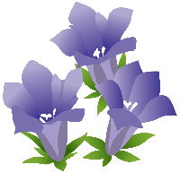 敬老の日に贈る花