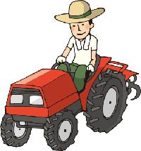 湿田の稲刈り、コンバインで角刈り